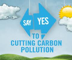 Carbon Pollution