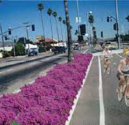 Los Angeles…an environmental conundrum?