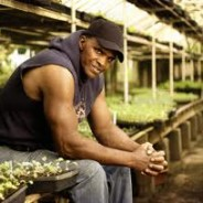 Growing Power: urban farming for the people