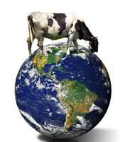 Meat and Greenhouse Gas on Earth Day