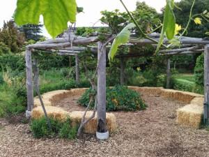 ESY Garden